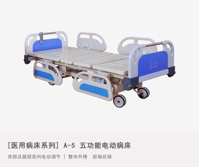 A-5 Five-function Electric Bed