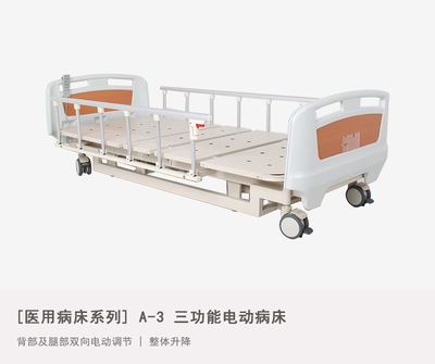 A-3 Three-function Electric Bed